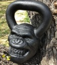 Primal Kettlebells Collection collection