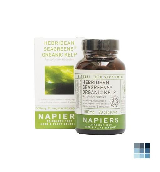 Seagreens Organic Hebridean Kelp by Napiers